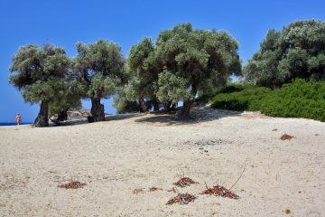 Tsougkrias beach